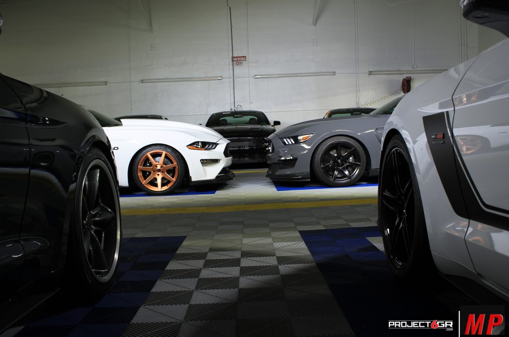 Double the Trouble, Ford Mustang GT and GT350 come face to face!
