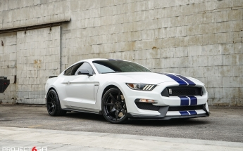 project-6gr-7-r-spec-gloss-black-white-shelby-gt350-05