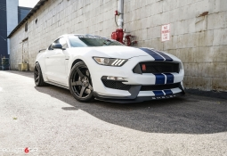 project-6gr-5-five-shelby-gt350-gloss-black-05